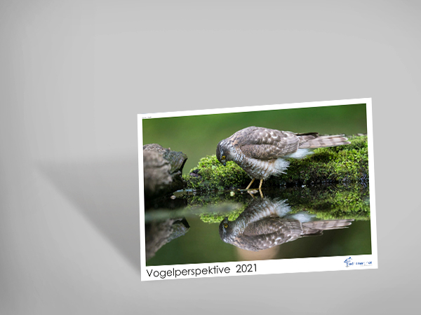 Wandkalender «Vogelperspektive 2021»