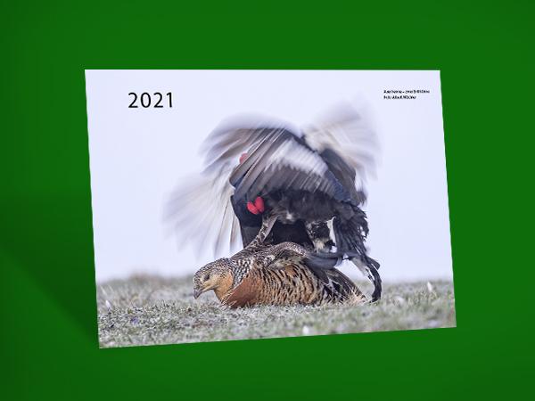 Wildkalender 2021 - klein